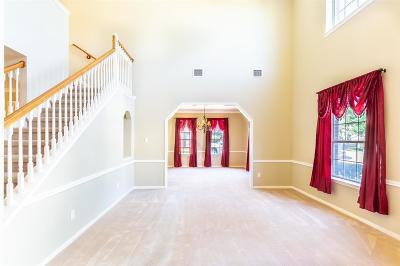 Sugar Land Single Family Home For Sale: 10106 Elder Mill Lane