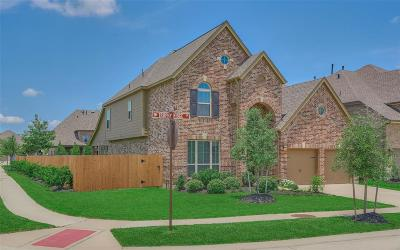 Spring Single Family Home For Sale: 3834 Trophy Ridge Drive