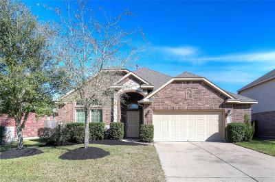 Shadow Creek Ranch Single Family Home For Sale: 12901 Shady Springs Drive
