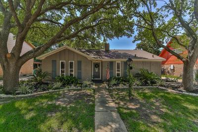 Katy Single Family Home For Sale: 21122 Park Brush Lane