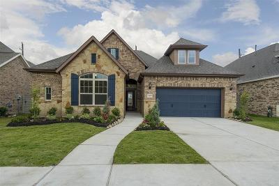 Manvel Single Family Home For Sale: 4410 Bayberry Ridge