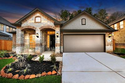 Montgomery TX Single Family Home For Sale: $279,990