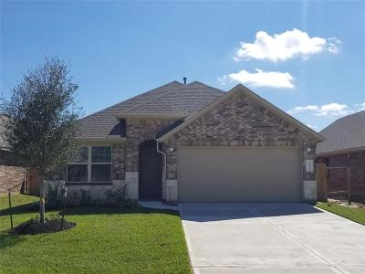 Katy Single Family Home For Sale: 23815 Ancona Court