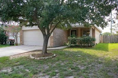 Tomball Single Family Home For Sale: 20223 Evening Primrose Lane