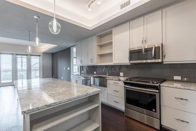 Harris County Rental For Rent: 2311 Mid Lane #1213