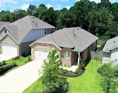 Montgomery Single Family Home For Sale: 205 Emory Birch