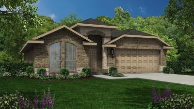 Conroe Single Family Home For Sale: 2573 Wood Park Boulevard