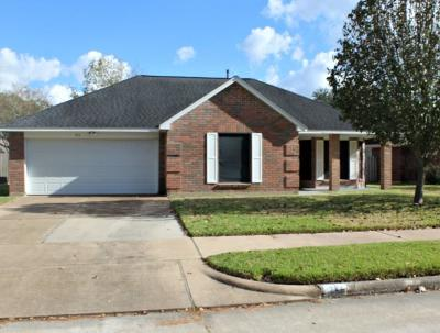 Pearland Single Family Home For Sale: 711 Maple Branch Lane
