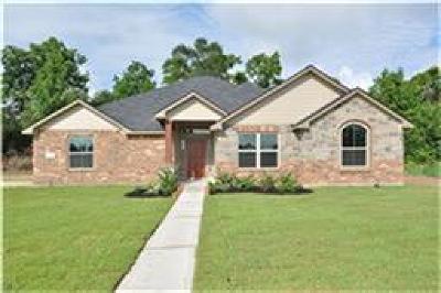 Dayton Single Family Home For Sale: 100 Mason