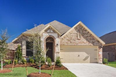 Conroe Single Family Home For Sale: 2662 Cedar Path Lane