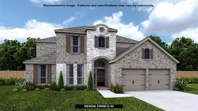 Tomball Single Family Home For Sale: 25109 Pinebrook Grove Lane