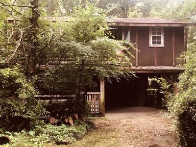 Single Family Home For Sale: 20177 Pine Lane