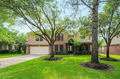 Houston Single Family Home For Sale: 11507 Aucuba Lane