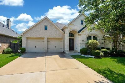 Sugar Land Single Family Home For Sale: 6015 Falling Briar Lane