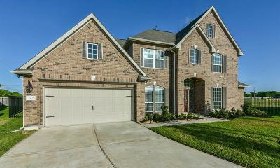 Rosharon Single Family Home For Sale: 2703 Silver Falls Lane