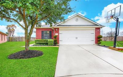 Tomball Single Family Home For Sale: 19439 Nasworthy Drive