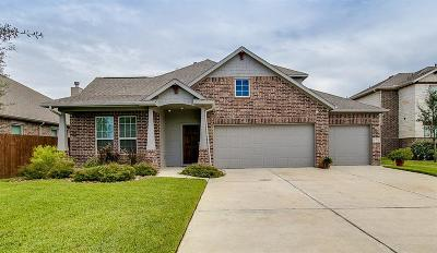 Hockley Single Family Home For Sale: 16206 Tyler Reach Drive