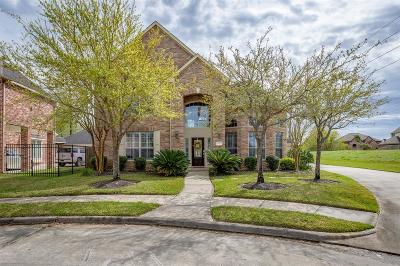 Galveston County, Harris County Single Family Home For Sale: 15623 Marble Canyon Way