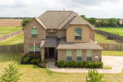 Rosharon Single Family Home For Sale: 5002 Magnolia Bend Drive