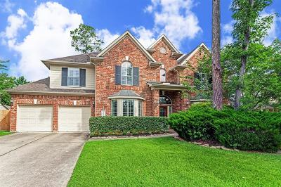 The Woodlands Single Family Home For Sale: 50 S Winsome Path Circle