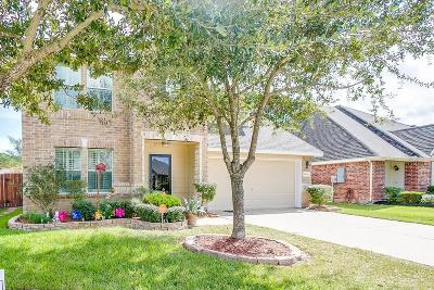 Dickinson Single Family Home For Sale: 4031 Basswood Drive