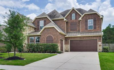 Katy Single Family Home For Sale: 5907 Verde Place Lane