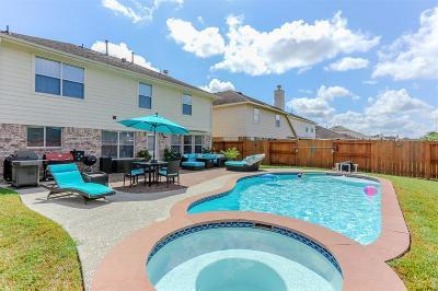Missouri City Single Family Home For Sale: 2710 Argos Drive