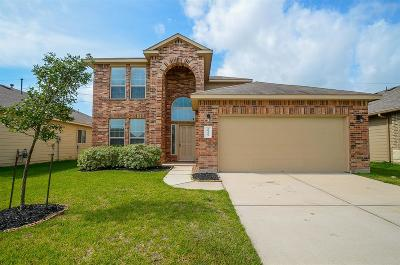 Katy Single Family Home For Sale: 20423 Chatfield Bend Way