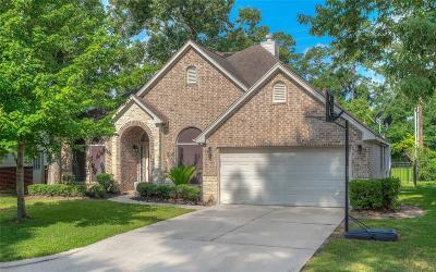 Montgomery Single Family Home For Sale: 12515 Lakeview Drive