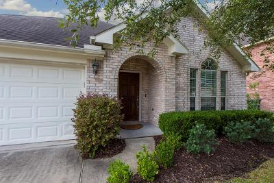 League City Single Family Home For Sale: 1017 Brazos Ct