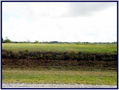 Austin County Farm & Ranch For Sale: 0000 000 Fm 2187 Road