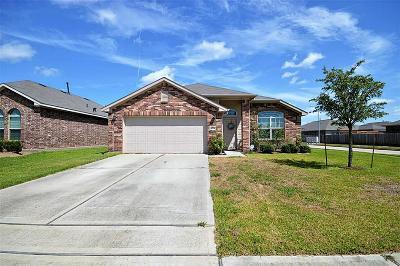 Houston Single Family Home For Sale: 6539 Brimridge Lane