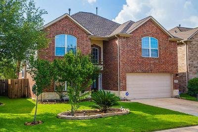 Tomball Single Family Home For Sale: 8318 Terra Valley Lane