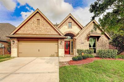 Pearland Single Family Home For Sale: 2513 Mountain Sage Drive