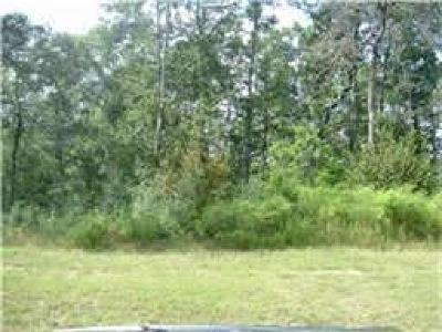 Spring Residential Lots & Land For Sale: 27410 Hazy Landing Court