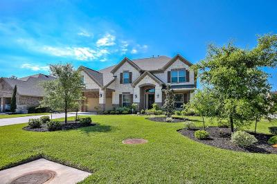 Montgomery Single Family Home For Sale: 201 River Wilde Drive