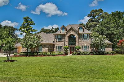 Tomball Single Family Home For Sale: 23603 Powder Mill Drive