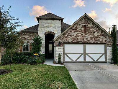 League City Single Family Home For Sale: 3010 Kurth Canyon Court