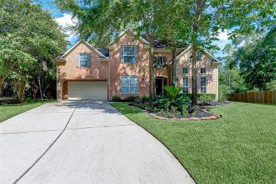 The Woodlands Single Family Home For Sale: 18 Pawprint Place