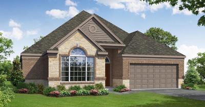 Rosenberg Single Family Home For Sale: 4919 Windy Poplar Trail