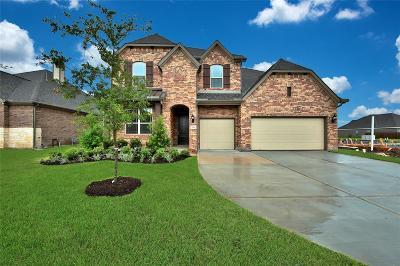 League City Single Family Home For Sale: 3064 Bellflower Pass Lane