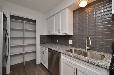 Houston Single Family Home For Sale: 13223 Robinglen Drive