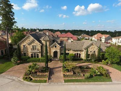 Houston Single Family Home For Sale: 9606 Vintage Springs Lane