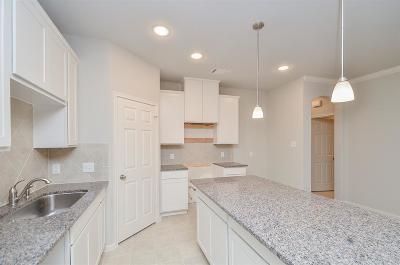 Texas City Single Family Home For Sale: 3202 Royal Albatross Drive