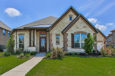 Friendswood Single Family Home For Sale: 1027 Bolivar Point Lane