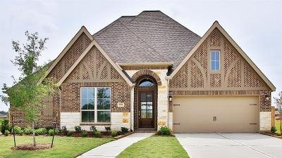 Tomball Single Family Home For Sale: 25113 Pinebrook Grove Lane