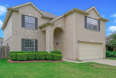 Tomball Single Family Home For Sale: 12018 Piney Bend Drive