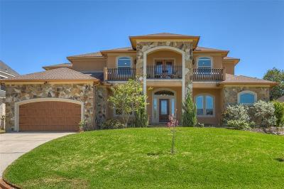 Montgomery Single Family Home For Sale: 175 April Waters Drive N