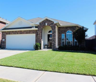 Houston Single Family Home For Sale: 10715 Clear Arbor Lane