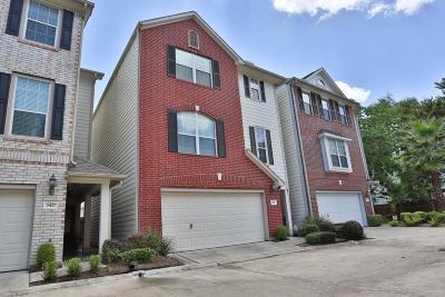 Houston Single Family Home For Sale: 3431 Skyline Village Drive